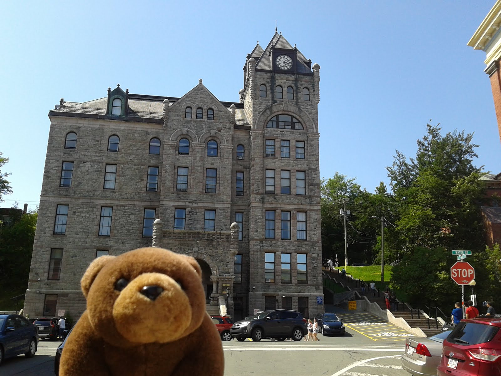 Teddy Bear in St.John's, Canada