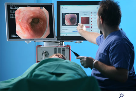 textbook : endoscopy of gi tract | open access books, Skeleton