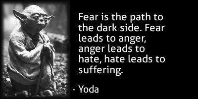 Fear is the path to the dark side. Fear leads to anger, anger leads to hate, hate leads to suffering.