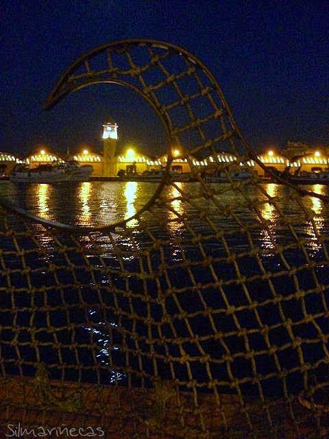 tinglados del puerto de gandia-