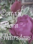 Visiting Charming Cottage Gardens on Thursdays