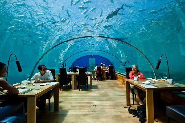 Ithaa underwater restaurant maldives arhguz for Ithaa restaurant maldives