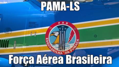 Especial: PAMA-LS