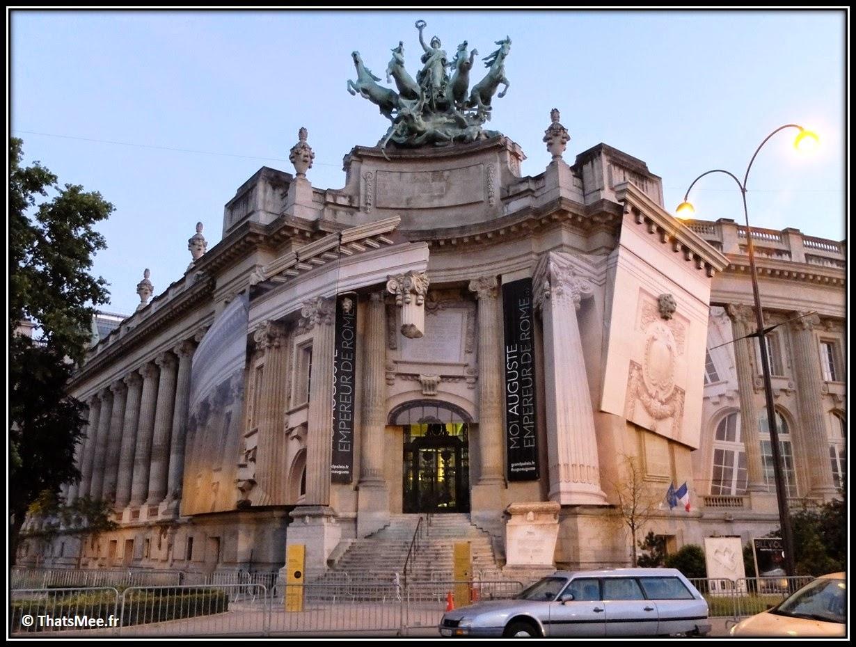 Grand Palais Monumenta 2014