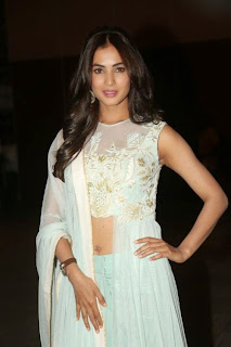 Actress Sonal Chauhan Pictures at Pandaga Chesko Audio Release  3