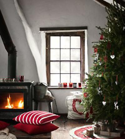 wood burning stove interiors