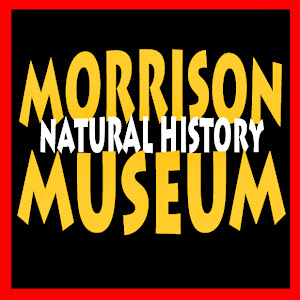 Morrison Natural History Museum