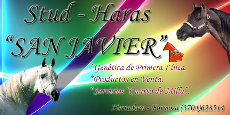 HARAS SAN JAVIER