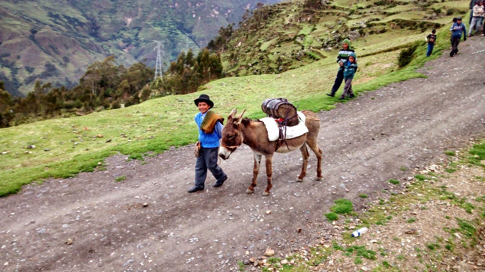 Herranza Andina