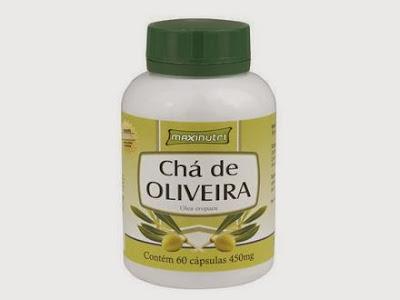 Como tomar e preparar Chá de Oliveira