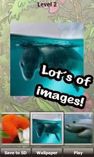 Blog Safari Club, Aplicación Android, wild animals puzzle.