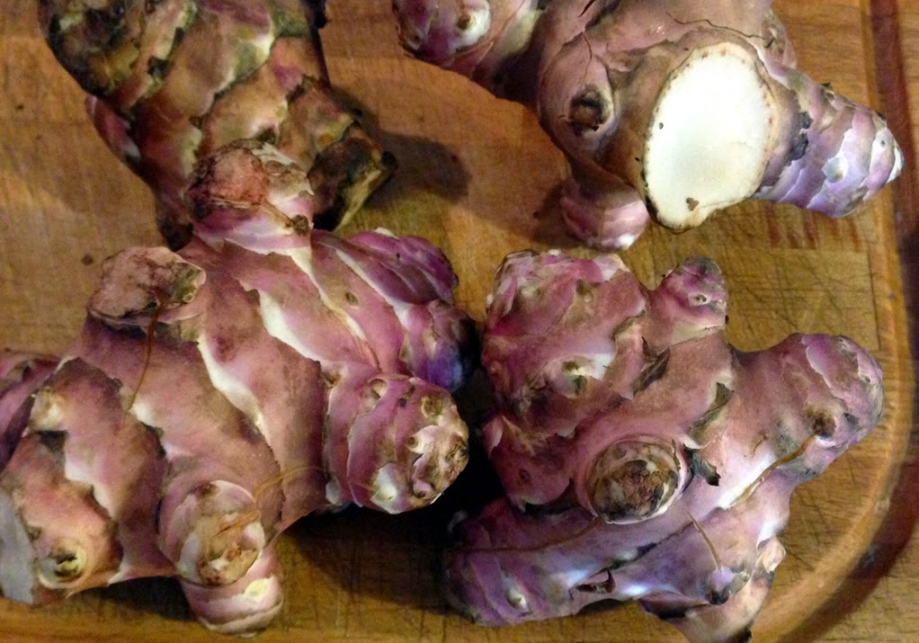 Trafficando in cucina dolmen di zucchine ripiene con pur - Inulina in cucina ...