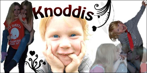Knoddis