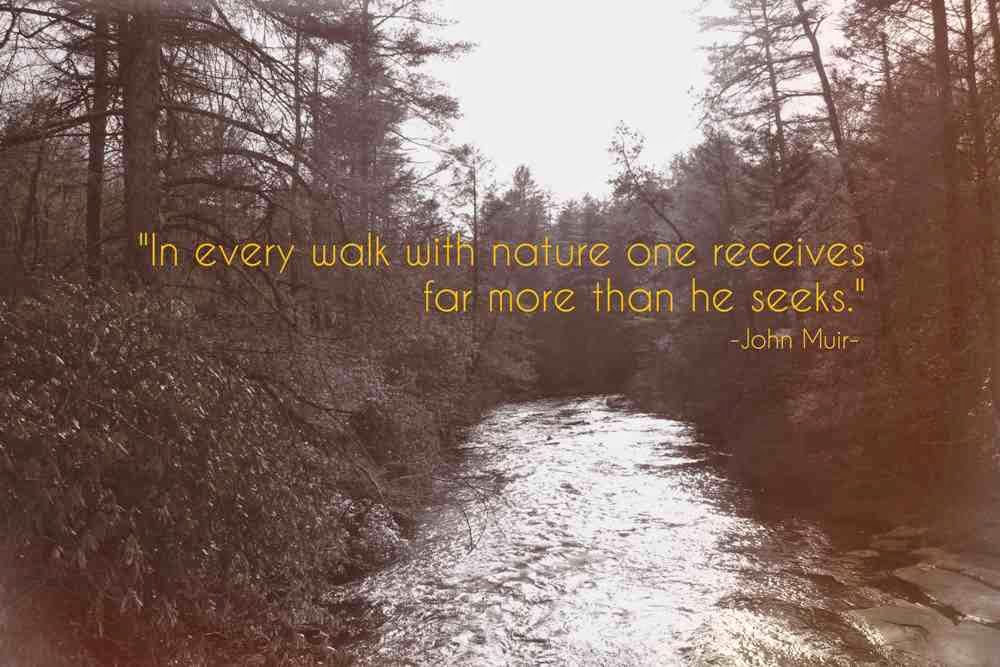 Images Of John Muir Quotes Wallpaper Calto