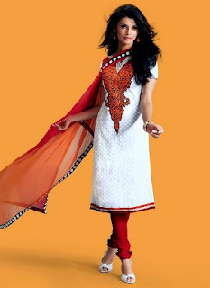 Indian-Festive-Salwar-Kameez