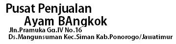 Pusat penjualan Ayam Bangkok