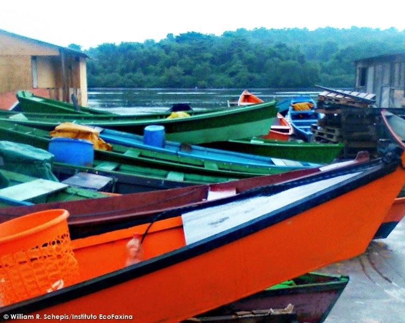 Canoas caiçaras utilizadas por pescadores da comunidade.