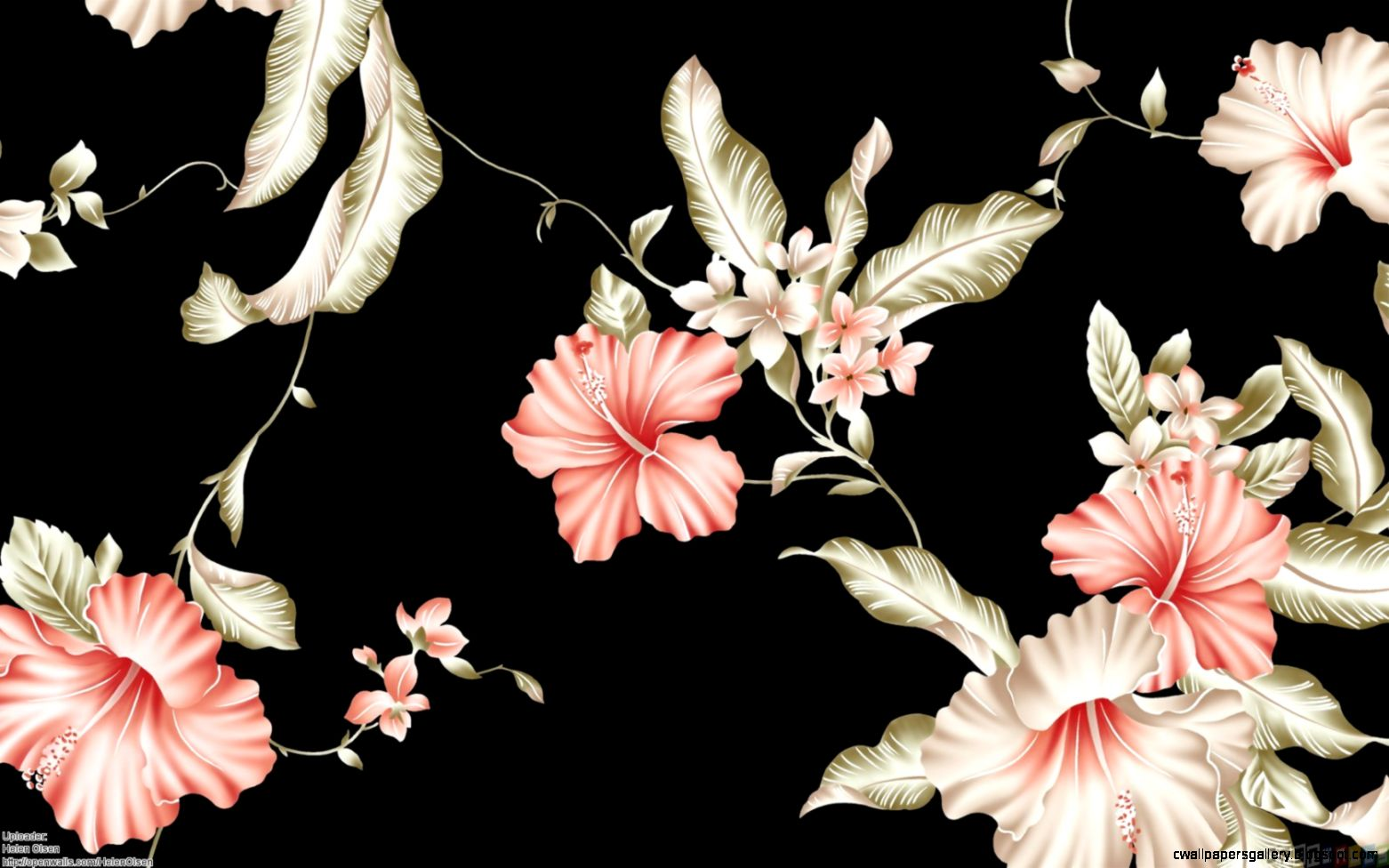 Pink flowers on a black background wallpaper 22015   Open Walls