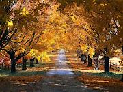 Según dicen llegó el otoño. Le temo y lo deseo, el otoño siempre ha sido . otoã±o
