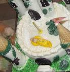 Anwar's Castle Cake/Gâteau Château d'Anwar & 2 Awards