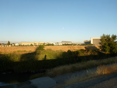 View from Stevens Creek Trail Toward Moffett Field