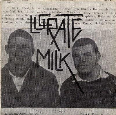 Lucrate Milk Lustiges Tierquartett