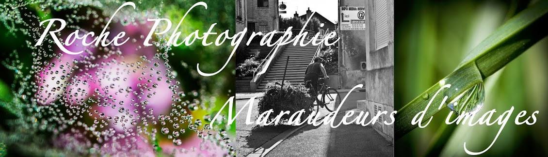 Maraudeurs d'Images &  Roche Photographie