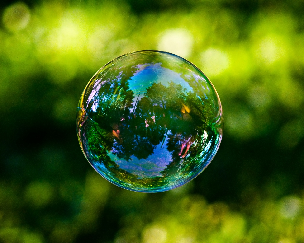 Therapy: Soap bubble Bubble
