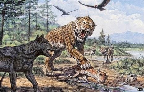 Smilodonte