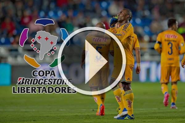 Tigres vs Juan Aurich En Vivo