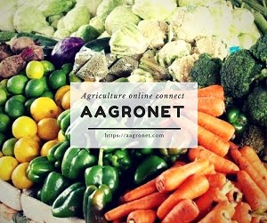 Aagronet: Sell Your Farm Products