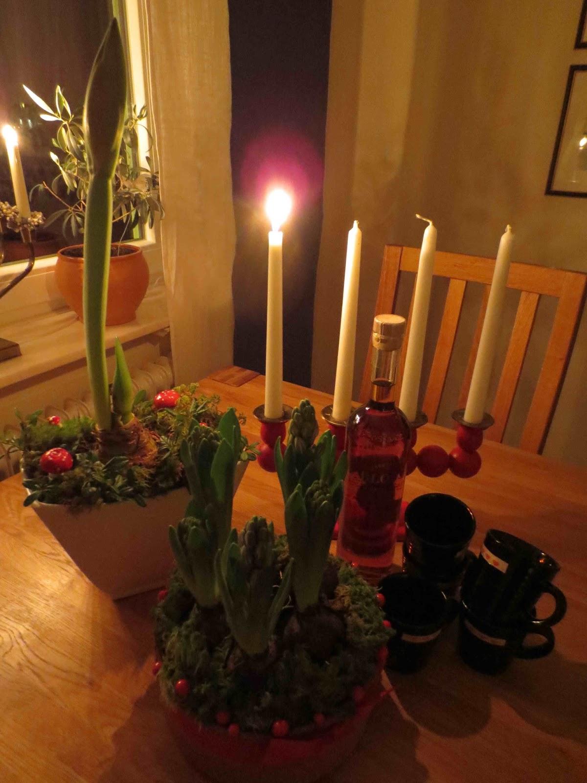 Rickardssons rosor & rabarber: november 2015