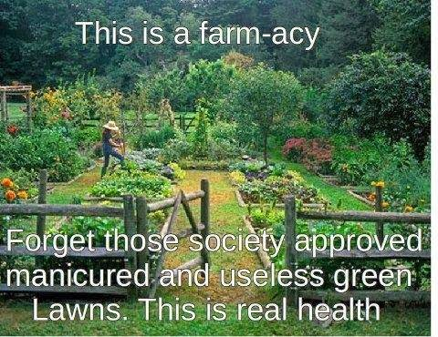 This is a Farm-acy
