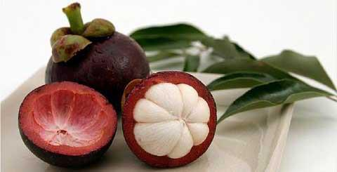 kulit buah manggis untuk kesehatan