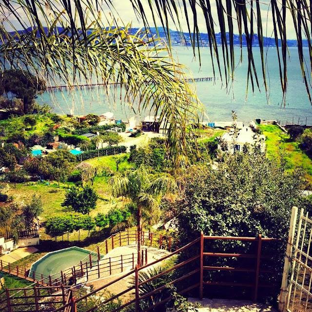 Arriva l estate al lost paradise tra musica e buon cibo for Arredatori di giardini