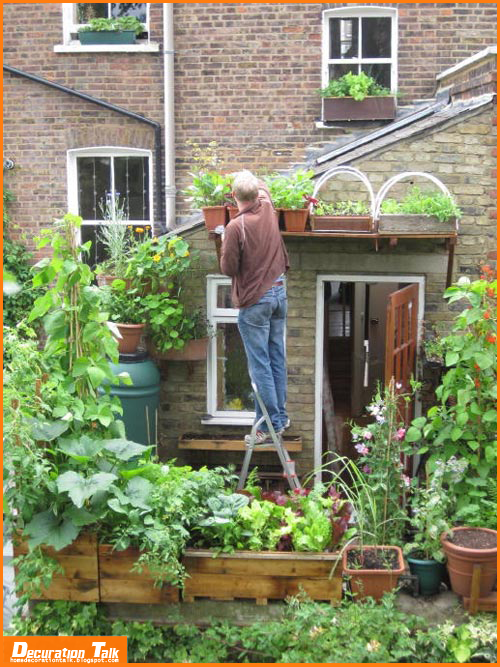 Best vegetables to grow on balcony home decoration ideas for Balcony vertical garden