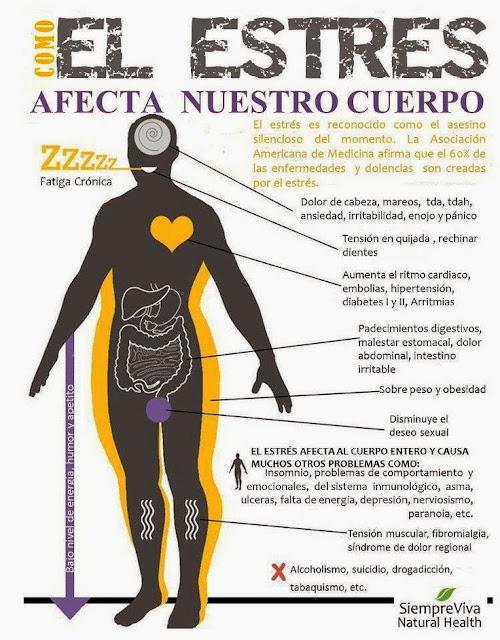 como el estres afecta nuestro cuerpo
