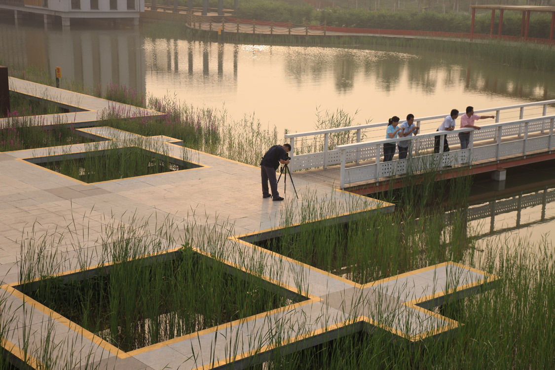 Landscape is hankin post industrial landscapes china for Red landscape architects