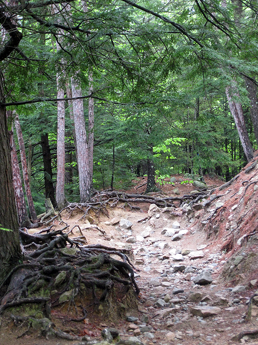 Hiking in the White Mountains and Adirondacks: Mount Major