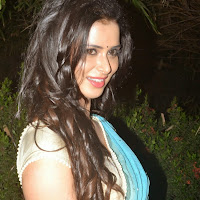 Meenakshi Dixit in Spicy Light Blue Saree Lovely Pics