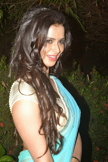Actress Meenakshi Dixit Latest Pictures in Saree at Thenaliraman Movie Audio Launch 1.jpg