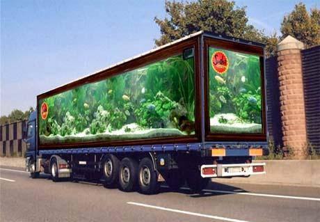fotos de camiones curiosas publicidad anuncios pecera