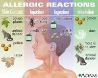 Tentang Alergi Dan Penyebabnya