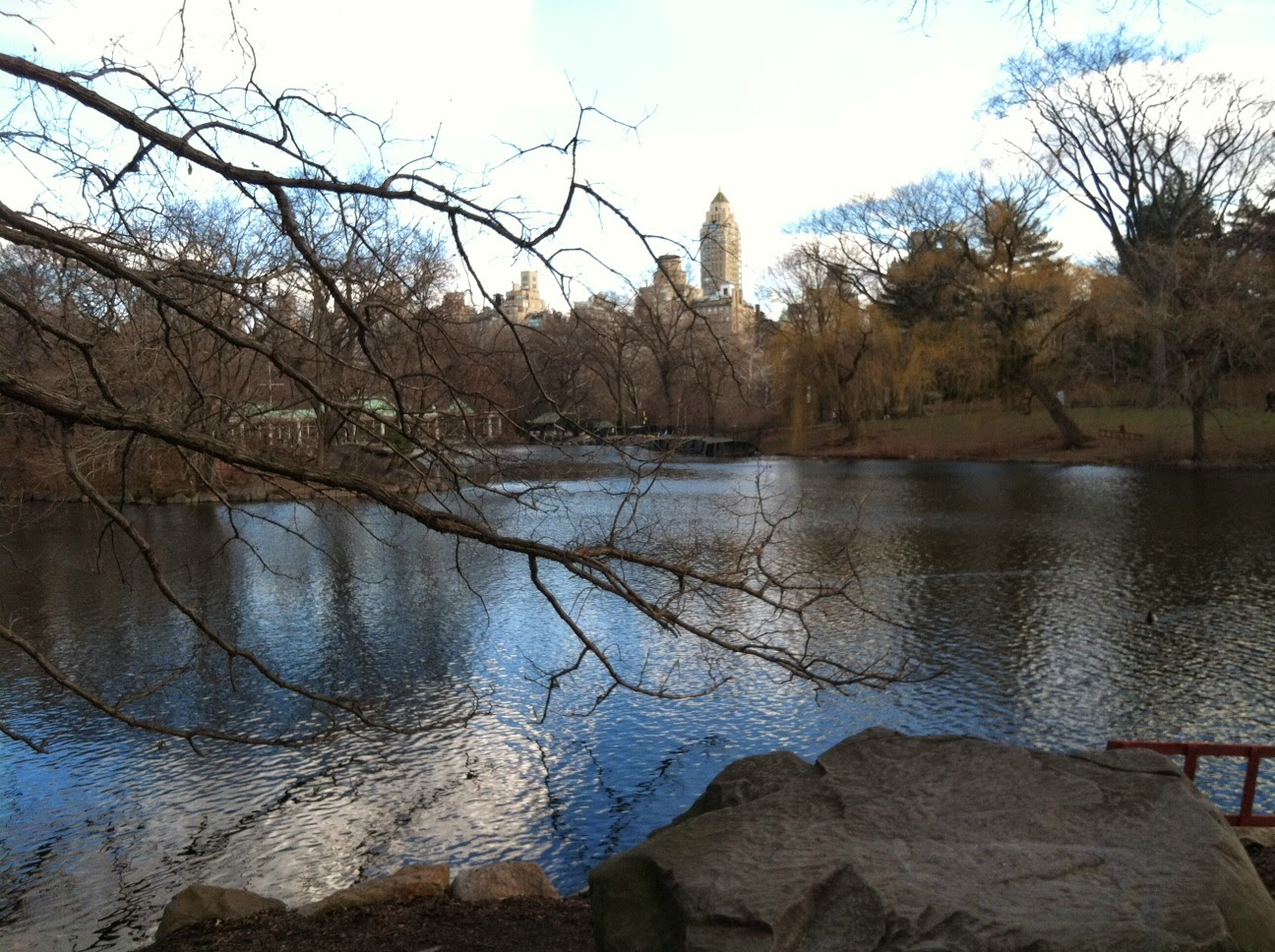 View of Central Park by Maja Trochimczyk