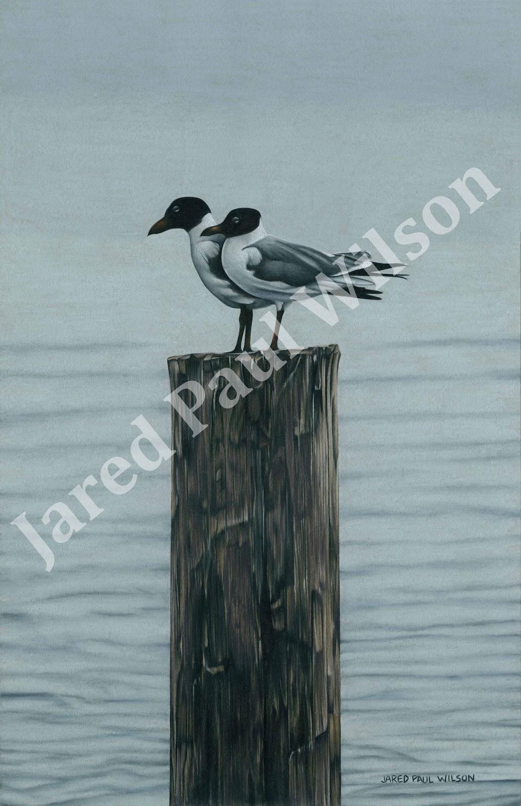 Jared Paul Wilson: Wildlife Art