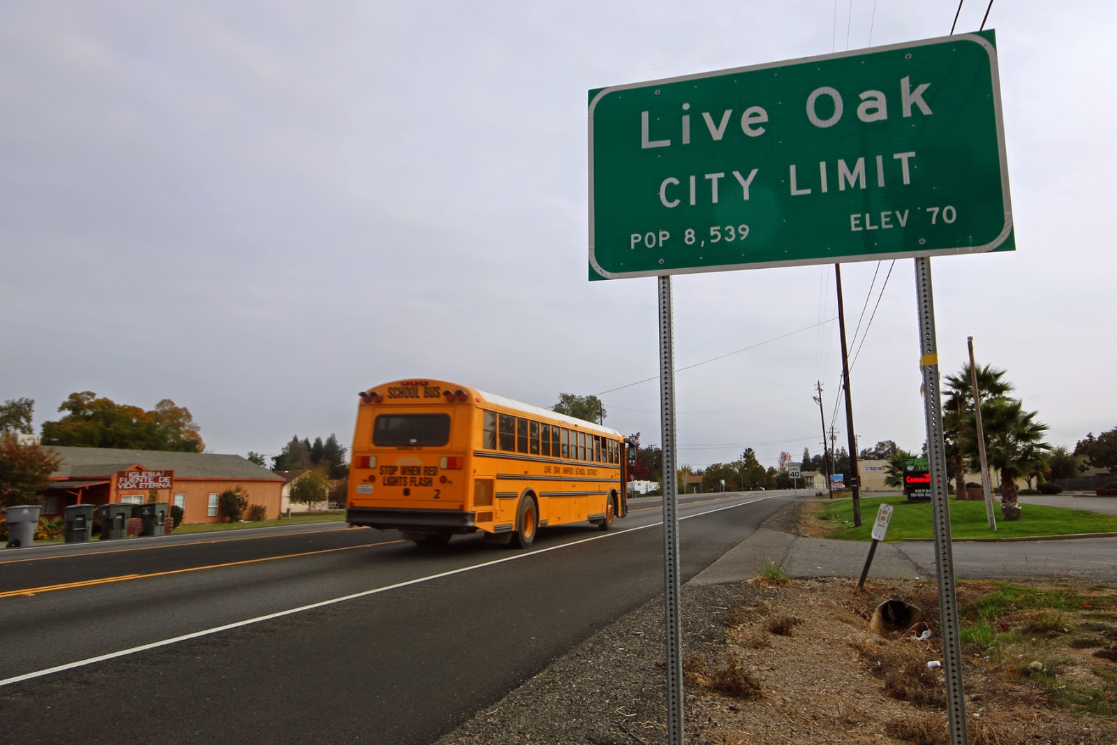 Live Oak, a rice country town with character