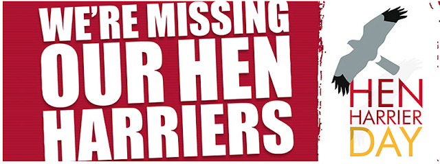http://henharrierday.org/
