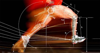 Termos técnicos da Cinesiologia junto com Anatomia