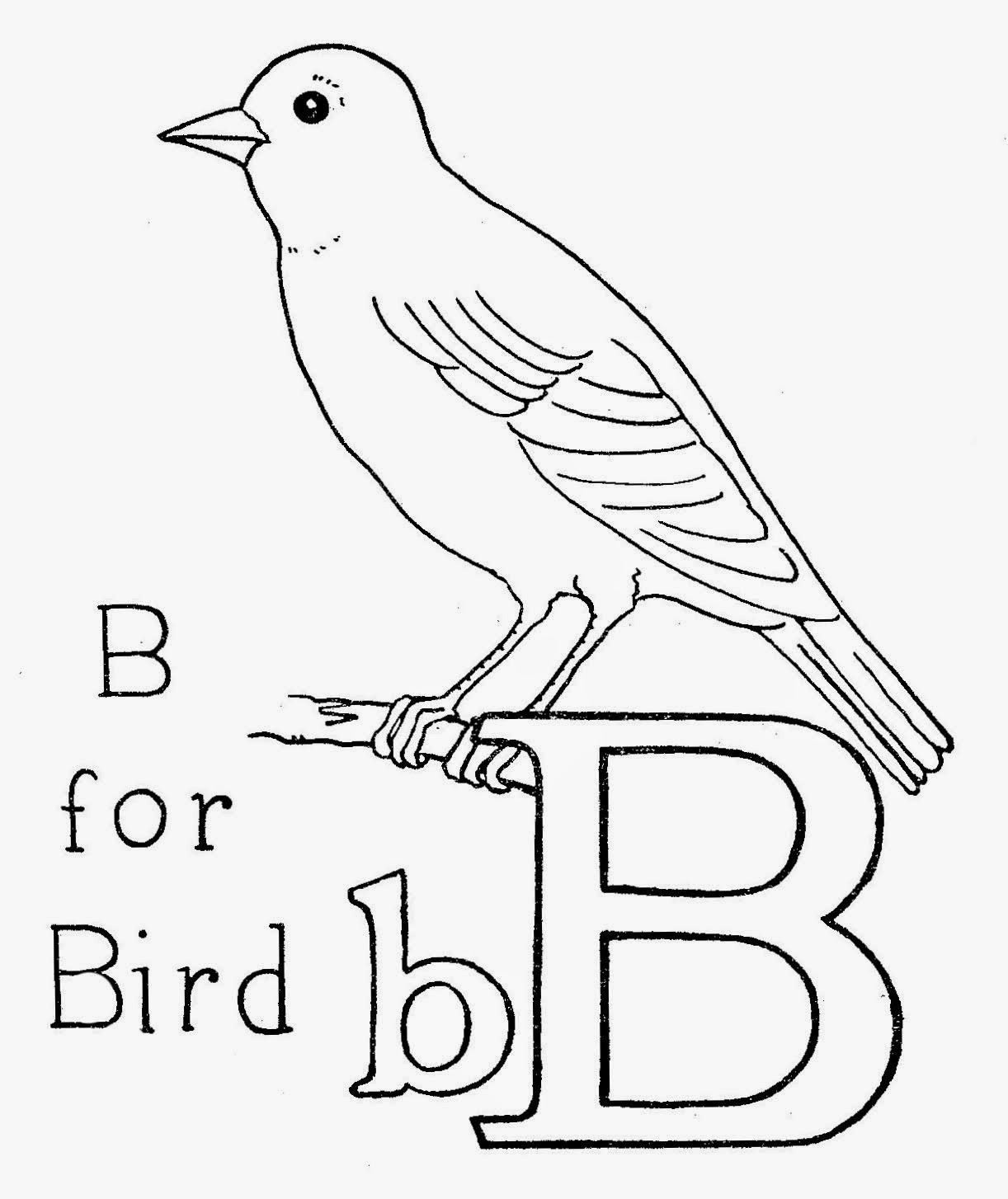 http://3.bp.blogspot.com/-XqvxNz7UtHc/U_-Aa1po7gI/AAAAAAAAKmY/FMR3Og9yrS4/s1600/bforbird2.jpg