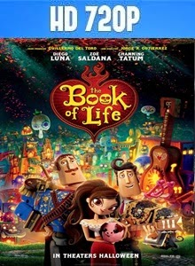Once Upon a Time in Brooklyn DVD Full Subtitulada 2013